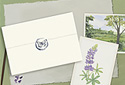 Butterfly Meadow animated Flash ecard