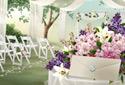 Wedding Day (photo card) animated Flash ecard
