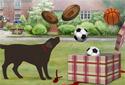 Have a Ball! animated Flash ecard