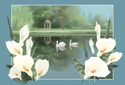 Swan Lake animated Flash ecard