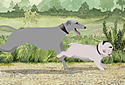A Walk in the Park animated Flash ecard