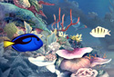 Aquatic Harmony animated Flash ecard