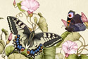 Butterfly Bouquet animated Flash ecard