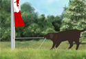 Raise the Flag (Canada) animated Flash ecard