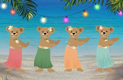 Hula Teddies